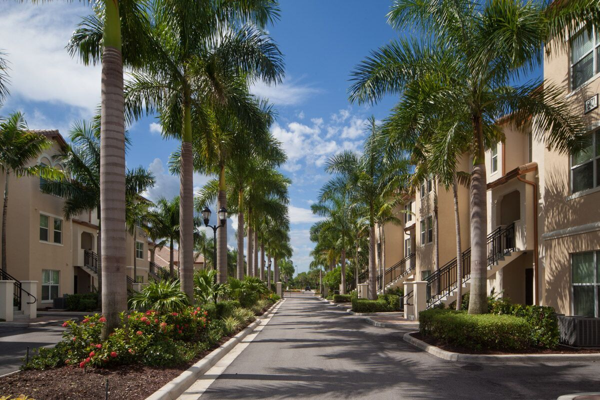 Entrance to community with palm tree lined street