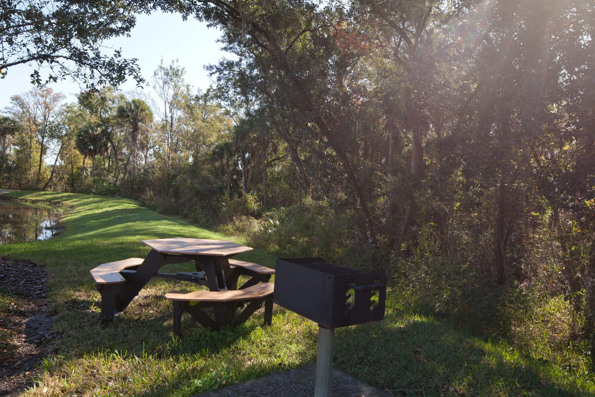 picnic bench and grill near woods