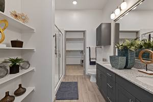 Apartment bathroom with large vanity, walk-in shower, and walk-in closet