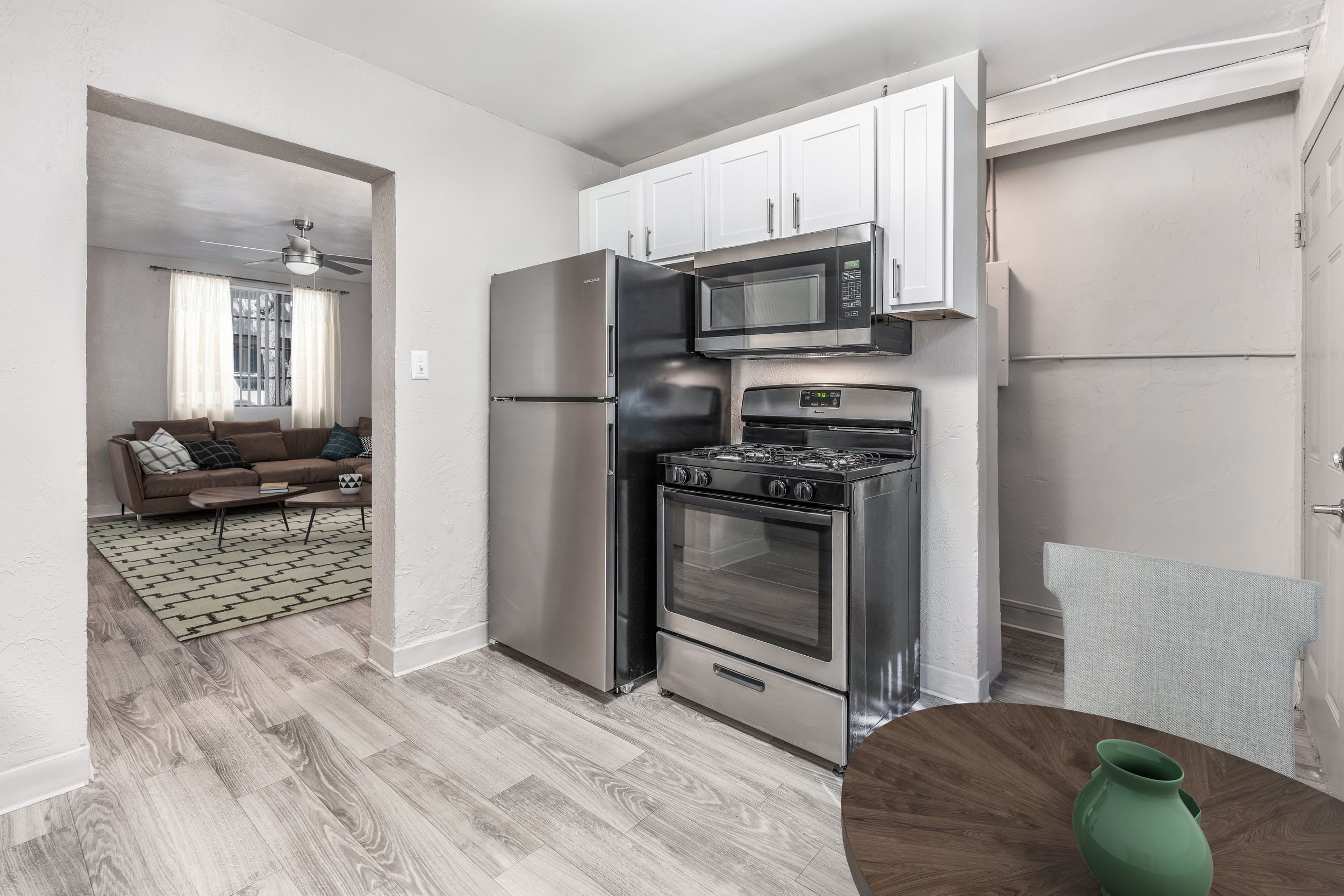 apartment entrance and kitchen