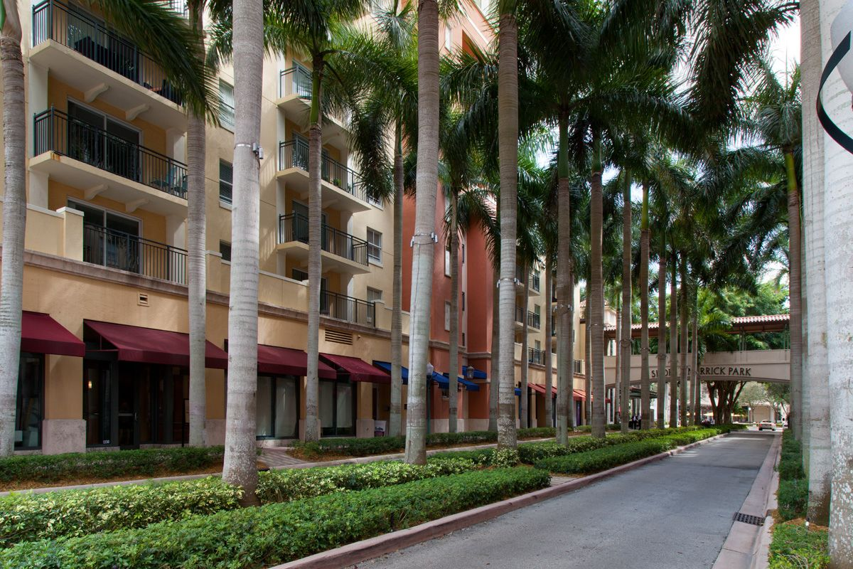 Divided street with palm trees between apartment buildings